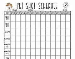 Printable Dog Vaccination Chart Image Result For Printable Puppy Shot Record Schedule