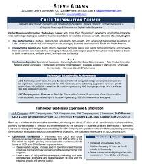 Examples Of Chief Executive Officer Sample Resume Best Solutions