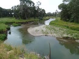 Judith River