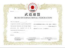 martial arts certificate template template martial arts certificate template judo recognition gift