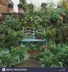 england london fulham metal garden bench by low brick wall surrounded by leafy climbing plants and plant pots front view