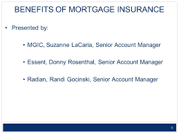 1 1 benefits of mortgage insurance presented by mgic suzanne lacaria senior account manager essent donny rosenthal senior account manager radian