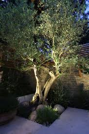 outdoor lighting effects. All You Need To Know About Outdoor Lighting. Sally Storey, Design Director Of John Cullen Gives Us Her Tips For Some Magical Garden Lighting Effects\u2026 Effects I