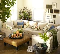 decorating ideas for my living room. Decorate My Living Room With Plants Decorating Ideas Fireplace For D