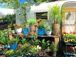 garden nurseries near me. Garden Nursery Street Plant Co Near Me Now . Nurseries