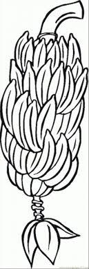 Small Picture Banana Tree Coloring Page Banana Coloring Page Banana Fruits