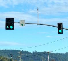 yield on green the new protected permissive system means that oncoming traffic isn