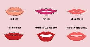 shape of your natural lips can say