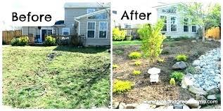 desert garden ideas landscaping backyards terrific landscape design high s24