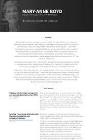 Resume CV Cover Letter  vice president of sales director of      Business Development Manager Resume Sample