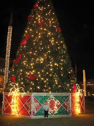 delray beach tree lighting. Boca Raton Christmas Tree Delray Beach Lighting H