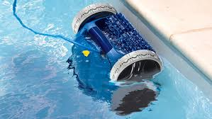 2 Various Types of Pool Cleaners All Pools