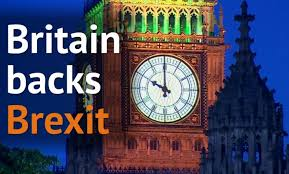 Image result for leave win referendum