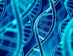 发现 —— 基因 表达 调控 常规 操作 将 被 重写! - 生物 通