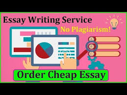 phrases opinion essay worksheet pdf