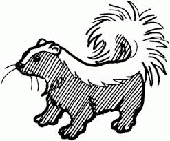 Coloring Page Skunk Embroidery Idea S Pinterest Coloring