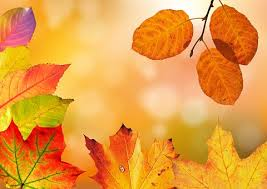 Fall Images Free Fall Foliage Images Pixabay Download Free Pictures