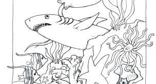 Ocean Coloring Page Ocean Coloring Pages Preschool Beach Animals