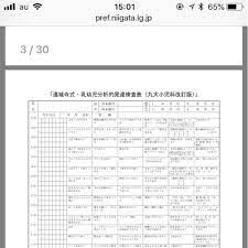 円城寺 式 乳幼児 分析 的 発達 検査