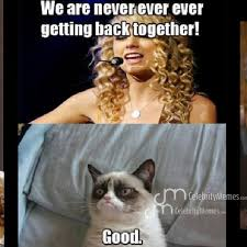 Double tap ! #Taylor #swift #grumpy #kitty #we #are #never ... via Relatably.com