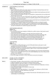 Big Four Resume Sample Audit Senior Resume Samples Velvet Jobs 10