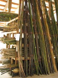bamboo garden stakes. Fine Bamboo Inside Bamboo Garden Stakes O