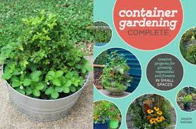 container gardening for beginners. Make A Berry Container Garden From Gardening Complete For Beginners