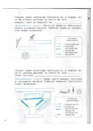 Иллюстрация из для Окружающий мир класс Обитатели Земли  Иллюстрация 8 из 17 для Окружающий мир 3 класс Обитатели Земли Проверочные и
