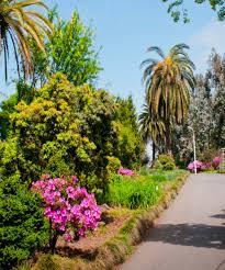 batumi botanic gardens in georgia