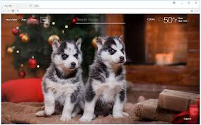christmas puppies wallpaper.  Puppies Inside Christmas Puppies Wallpaper P