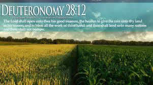 Bible Harvest Quotes