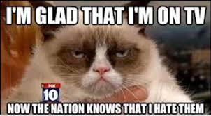 My 35 Favorite Grumpy Cat Memes - Part 5 via Relatably.com