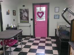 room manchester menu design mdog: my dog groom shop  my dog groom shop