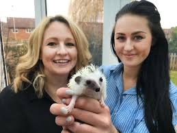 Louise and Sophie Richards, from Lychpit, set to appear on ITV show about  posh pets | Basingstoke Gazette