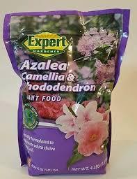 azalea camellia rhododendron plant food