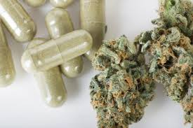 Image result for marijuana medical
