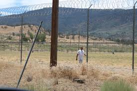 Tehachapi State Prison Cci Inmates Walk For Relay For Life On Prison Yard News