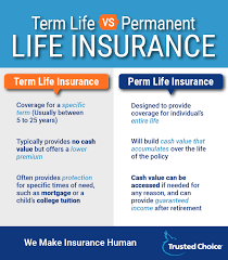 64 Exhaustive Life Insurance Types Comparison Chart