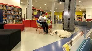 Für diese schicht kommen viele verschiedene materialien in betracht, wie zum beispiel parkett, teppichboden oder vinylboden. Hund Der Stadtbibliothek Hilft In Heilbronn Beim Lesenlernen Swr Aktuell