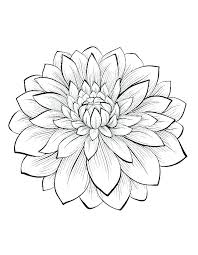 Best Flower Coloring Pages Ideas On Flowers Decorating Free Roses