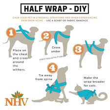 DIY thundershirt for those afraid of... - The Humane Society of Navarro  County | Facebook
