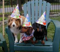 **SASSY** Birthday Wishes  Images?q=tbn:ANd9GcSXzrTKysrjUthHUQuo1Vz5RkHtU7_F6epFBvvLeCEH9f_y6Oo9Mw