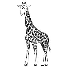 キリンのイラストpng えんぴつ素材