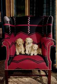 Ill Take This Please Complete With Puppies Please Ralph Lauren Ralph Lauren Home Chairs