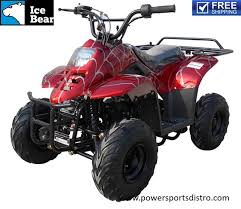 dyno 110cc pah110 2 quad is a mini scale atv designed specifically