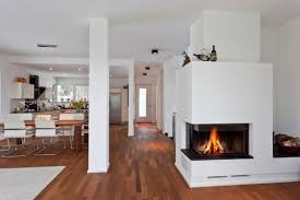Excellent Mid Century Modern Fireplace Doors Pictures Design Ideas ...