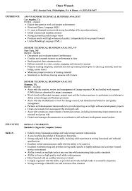 Senior Technical Business Analyst Resume Samples | Velvet Jobs