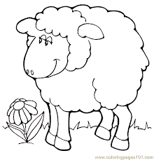 Small Picture Sheep Coloring Page 11 Coloring Page Free Sheep Coloring Pages