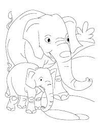 Elephant Color Pages Bracessingaporeinfo