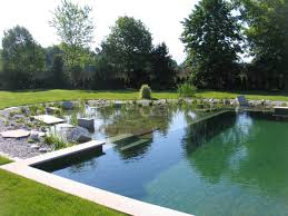 Swimming Pool:Stone Pond Idea As Natural Swimming Pool Design Calm Swimming  Pool Design With